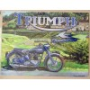 Triumph Thunderbird Motorbike Large Metal Sign