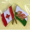 Canadian Welsh Friendship Badge