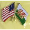 American Welsh Friendship Badge