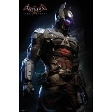 Batman Arkham Asylum Gaming Maxi Poster