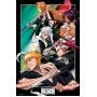 Bleach Anime Maxi Poster