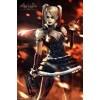 Harley Quinn Fire Arkham Asylum Gaming Maxi Poster